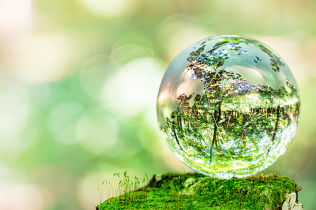 Photo for MOSS and glass globes - Royalty Free Image
