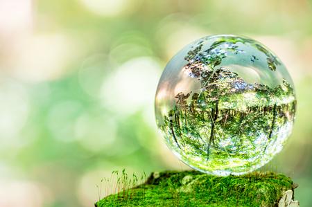 Photo pour MOSS and glass globes - image libre de droit