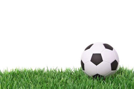 A soccer ball lying on a fine green meadow
