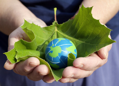 person holding a leaf with small earth