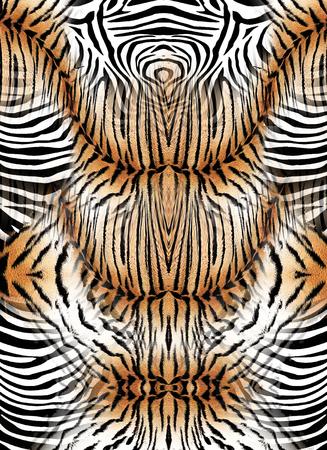 Foto de Zebra and tiger skin background - Imagen libre de derechos