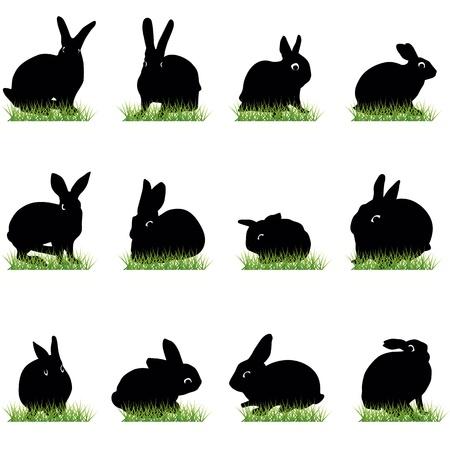Rabbits silhouettes set