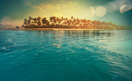 Photo for Serenity tropical beach - Royalty Free Image