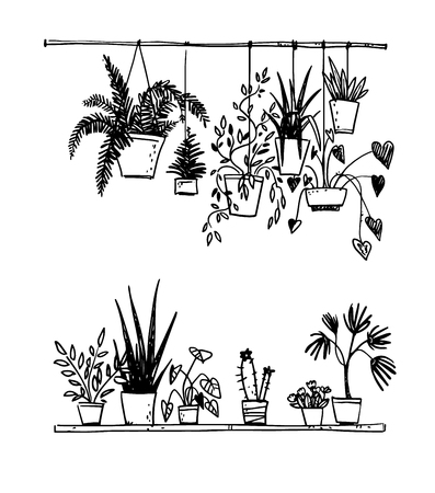Illustration pour Set of potted house plants - image libre de droit