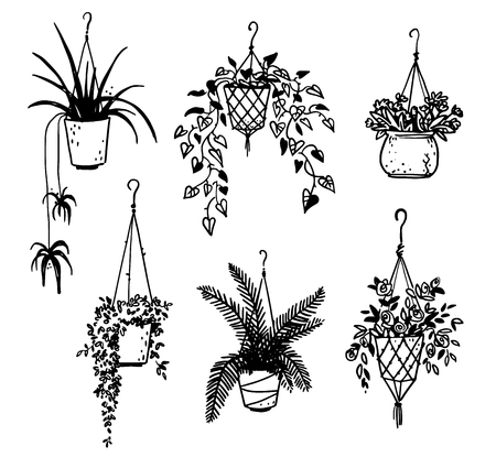 Illustration for Set of potted house plants - Royalty Free Image