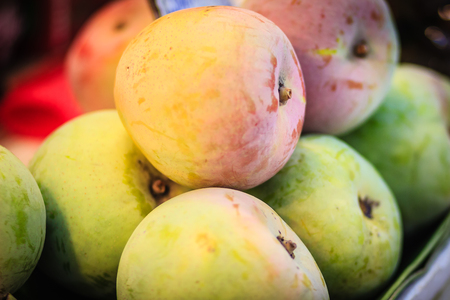 Foto de Extra jumbo size of organic R2E2 mangoes for sale at the fruit market. Row 2 Experiment 2, R2E2 apple mango is the colorful and delicious mango for export. - Imagen libre de derechos