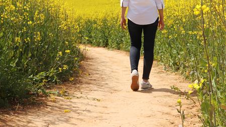 Foto de A woman is walking on the path to the rape flower garden. - Imagen libre de derechos