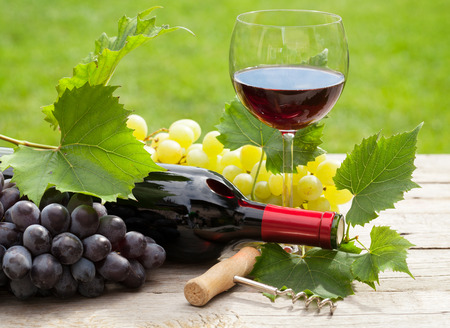 Photo pour Red wine glass and bottle with bunch of grapes in sunny garden - image libre de droit