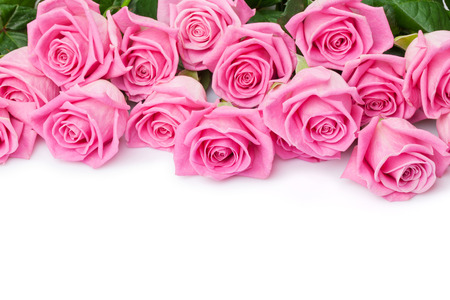 Photo pour Valentines day background with pink roses. Isolated on white with copy space - image libre de droit