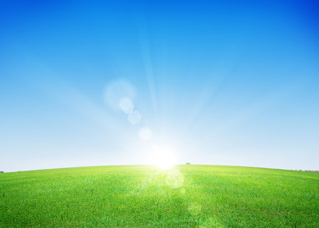 Photo for Endless green grass field and deep blue sky background - Royalty Free Image