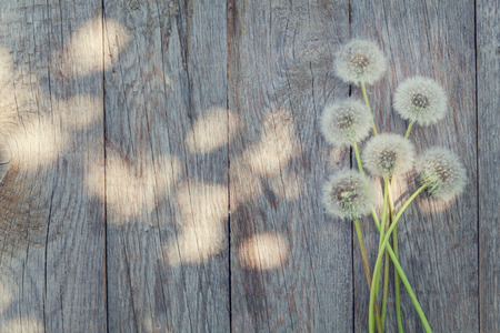 Photo for Dandelion flowers on wooden background with copy space - Royalty Free Image