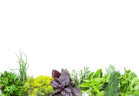 Photo pour Fresh garden herbs. Isolated on white background - image libre de droit
