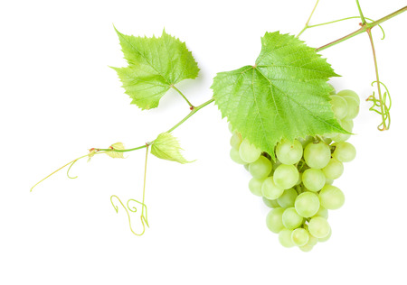 Photo for Bunch of white grapes with leaves. Isolated on white background - Royalty Free Image