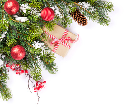 Photo for Christmas tree branch and gift box. Isolated on white background - Royalty Free Image