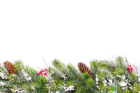 Photo pour Christmas tree branch with snow. Isolated on white background with copy space - image libre de droit