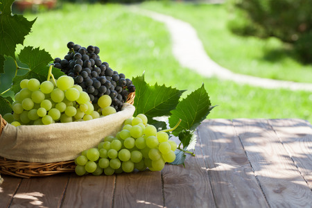 Photo for Red and white grapes in basket on garden table - Royalty Free Image