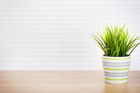 Foto de Office workplace with potted plant on wood desk table in front of window with blinds - Imagen libre de derechos