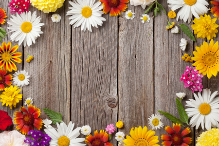 Foto de Garden flowers over wooden table background. Backdrop with copy space - Imagen libre de derechos