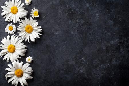 Photo pour Garden chamomile flowers over stone table background. Backdrop with copy space - image libre de droit