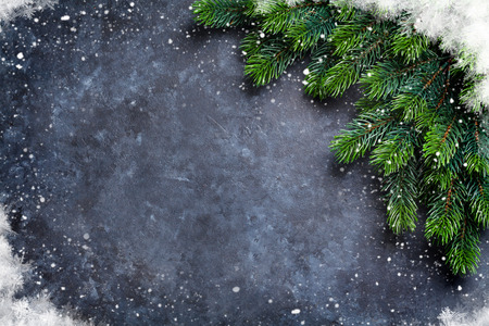 Foto de Christmas fir tree and snow over stone background. Top view with copy space for your greetings - Imagen libre de derechos