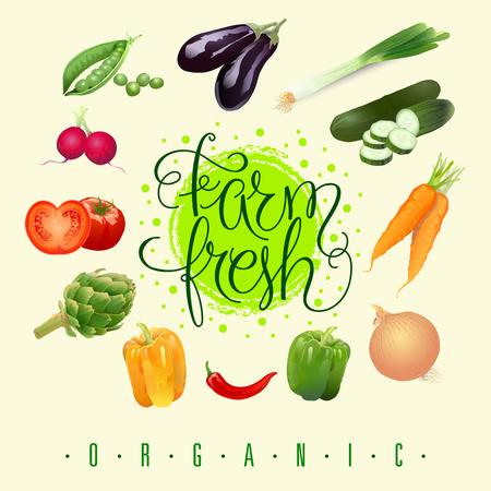 Farm fresh vegetables set