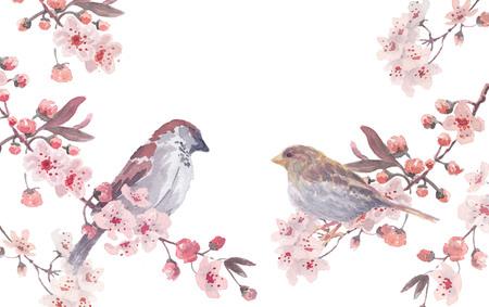 Ilustración de sparrow male and female with cherry branches and blossom wreath. Watercolor handmade vector illustration - Imagen libre de derechos