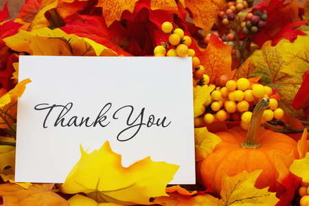 Foto für Thank You, Autumn Leaves with sky background with text Thank You - Lizenzfreies Bild