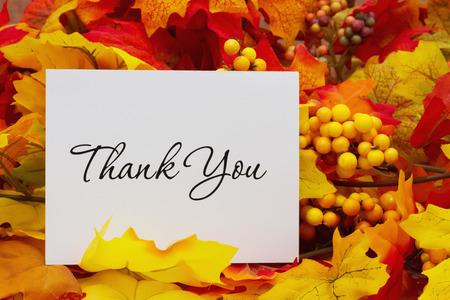 Photo pour Thank You, Autumn Leaves with a Thank You Card - image libre de droit