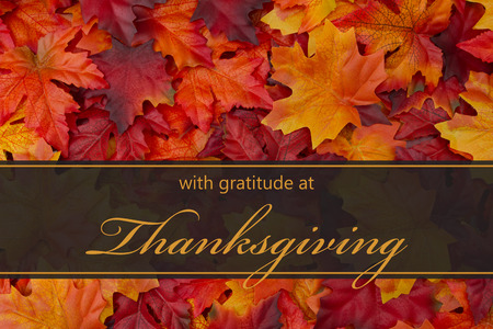 Photo for Happy Thanksgiving Greeting, Fall Leaves Background and text with gratitude at Thanksgiving - Royalty Free Image