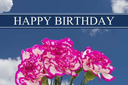 Happy Birthday Greeting with a Pink and White Peony Bouquet with a sky background