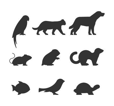 Illustration pour set of figures of pets. Black silhouettes pets isolated on white. Silhouettes parrot, cat, dog, mouse, hamster, ferret, fish, canary and turtle. - image libre de droit