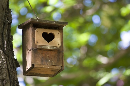 Bird house hanging from the tree with the entrance hole in the shape of a heart.