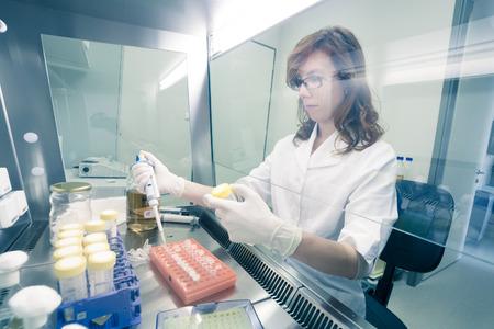 Foto de Female life scientist researching in laboratory, pipetting cell culture medium samples in laminar flow. Photo taken from laminar interior. - Imagen libre de derechos