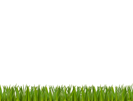 Ilustración de Green realistic grass horizontal border isolated on white background. - Imagen libre de derechos