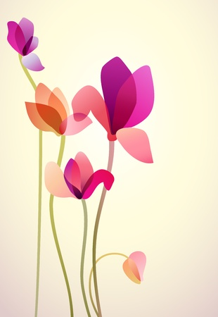 Vector illustration of five bright wild flowers