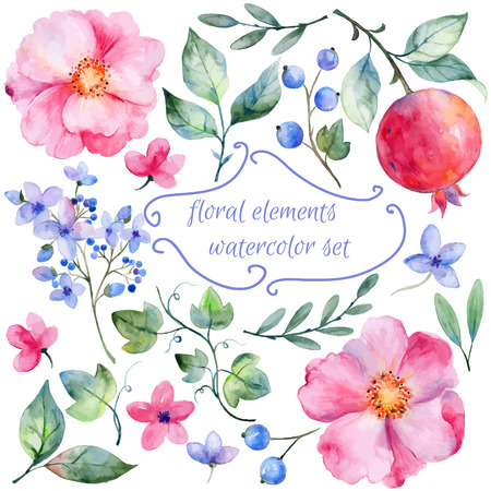 Illustration pour Set of different red pink flowers and pomegranate for design. Watercolor roses leaves. pomegranate. Set of floral elements for your compositions. - image libre de droit