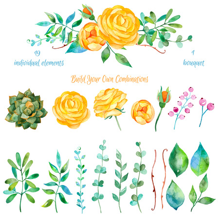 Illustration pour Vector floral set.Colorful floral collection with leaves and flowers drawing watercolor.Colorful floral collection with beautiful flowers 1 bouquet.Set of floral elements for your compositions. - image libre de droit
