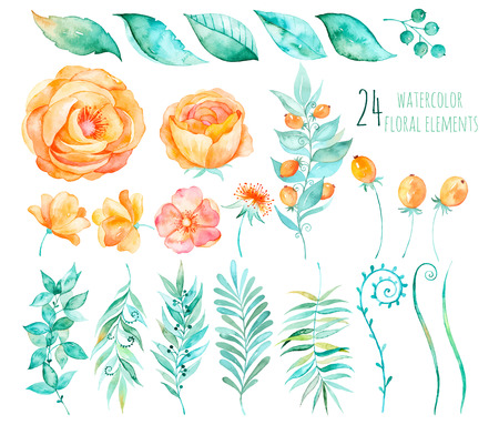 Ilustración de Colorful floral collection with roses, leaves, berries, branches and others.Hand design.Vector drawn floral collection for your compositions.Bright colors watercolor, spring-summer botanical Elements - Imagen libre de derechos