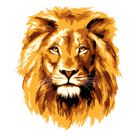 Illustration pour Big fiery lion - image libre de droit