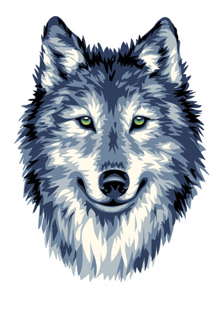 Illustration pour Wolf head vector illustration - image libre de droit