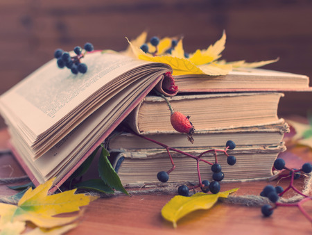 Foto de autumn - Imagen libre de derechos