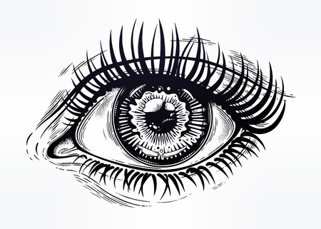 Ilustración de Beautiful realistic eye of a human girl with highly detialed pupil, iris and long dramatic eyelashes. Isolated vector illustration. Emotional expression, sticker, tattoo art. Trendy print. - Imagen libre de derechos
