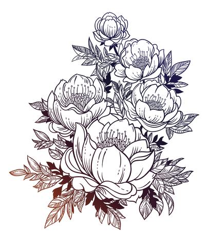 Illustration for Beautiful stem of magnolia, dogrose or peony flowers. - Royalty Free Image