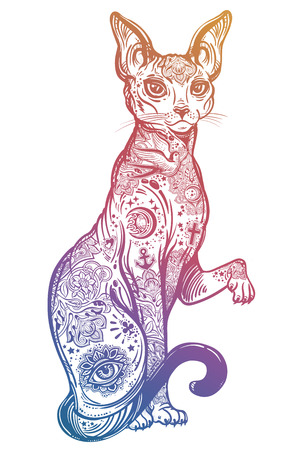 Illustration for Vintage style cat with body flash art tattoos. - Royalty Free Image