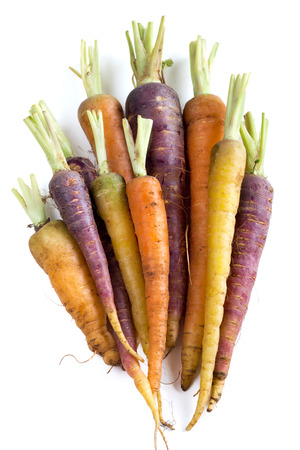 Photo pour Bunch of fresh organic rainbow carrots  isolated on white - image libre de droit