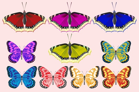 Illustrazione per A set of butterflies of different colors. For web and illustrations. Vector illustration. - Immagini Royalty Free