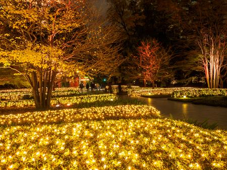 Photo for Japan Night view illumination - Royalty Free Image