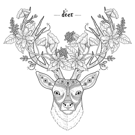 Illustration for elegant deer head coloring page in exquisite style - Royalty Free Image