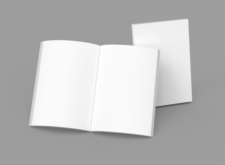 Photo pour Blank book template, mockup for design uses in 3d rendering, one standing open book with closed one - image libre de droit