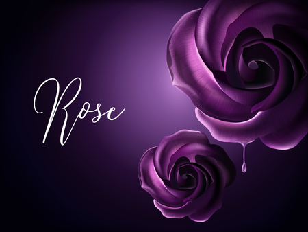 Illustration for Purple roses elements, decorative floral elements on purple background in 3d illustration - Royalty Free Image
